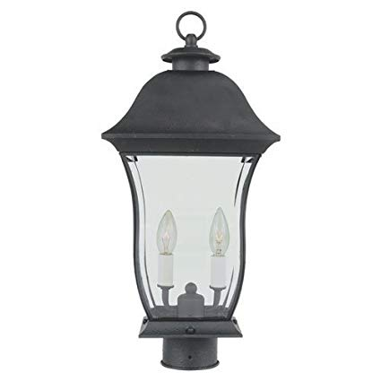 Trans Globe Lighting 4973 BK Outdoor Downing 20.5
