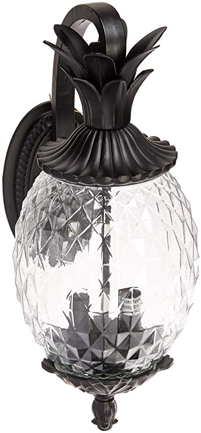 Acclaim 7502BK Lanai Collection 2-Light Wall Mount Outdoor Light Fixture, Matte Black