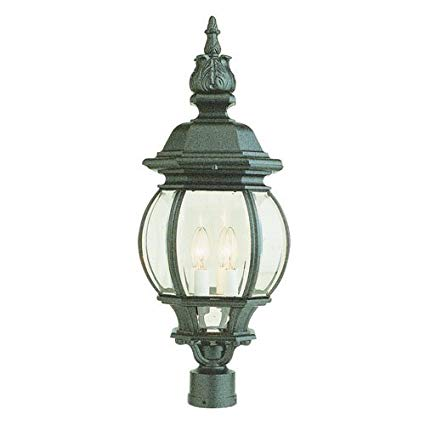 Trans Globe Lighting 4062 BK Outdoor Parsons 28